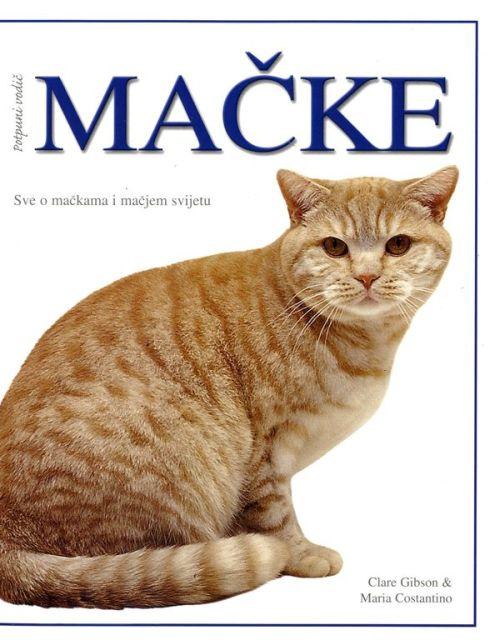 Mačke - potpuni vodič