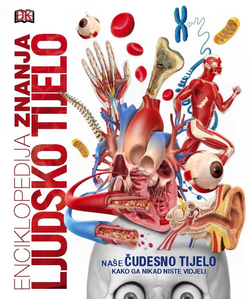 Enciklopedija znanja - Ljudsko tijelo