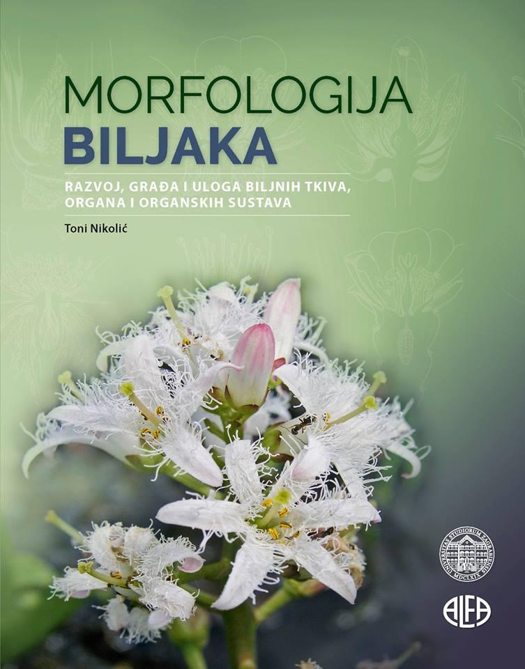 Morfologija biljaka