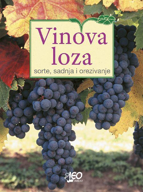 Vinova loza - sorte, sadnja i orezivanje
